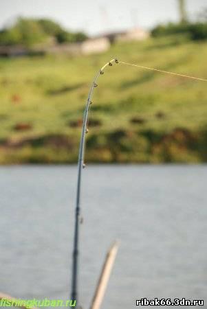 способы ловли рыбы на фидер